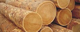 Güleç orman ürünleri orman ürünleri teak ahşap parke